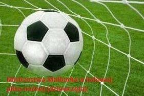 III lokata w Mistrzostwach Malborka w halowej piłce nożnej - dziewcząt