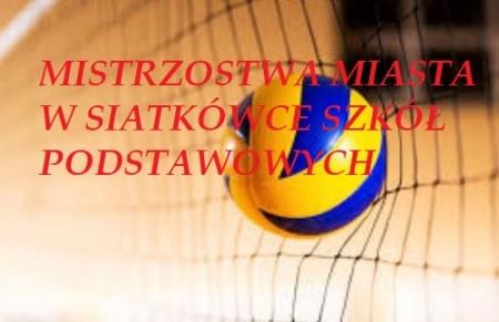 Mistrzostwa Malborka szkół podstawowych w siatkówce