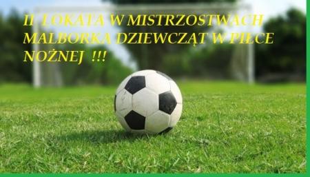 II lokata dziewcząt w Mistrzostwach Malborka i Powiatu Malborskiego w piłce no